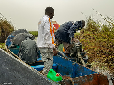 Boat repair at Mabamba Swamp, Uganda (11-24-2017) 162-4