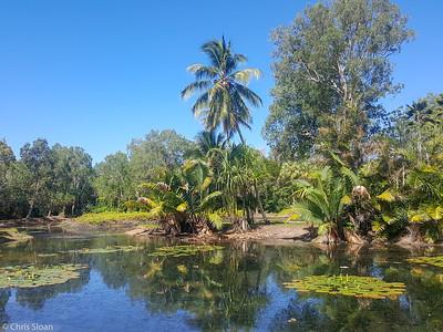 Centenary Lakes, Cairns, Queensland, Australia (11-14-2018) 20181114_142917