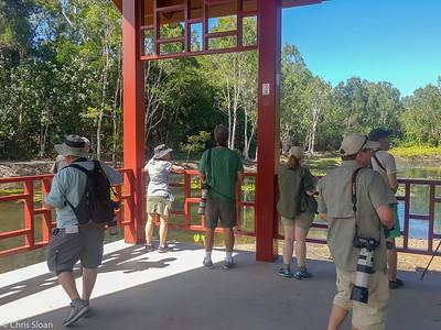 Centenary Lakes, Cairns, Queensland, Australia (11-14-2018) 20181114_143105