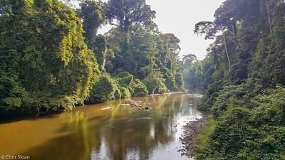 Danum River at Borneo Rainforest Lodge, Sabah, Malaysia (06-26-2016)-2-2