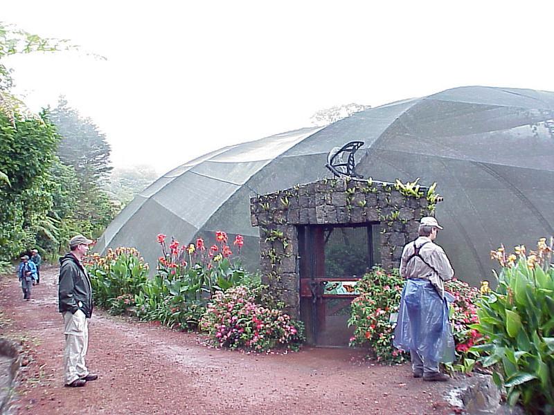 Butterfly Exhibit at La Paz Waterfall Gardens Costa Rica 2-10-03 (50898076)