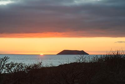 Sunrise over Daphne Major from North Seymour, Galapagos, Ecuador (11-19-2011) - 531