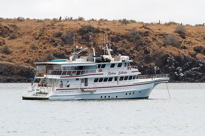 Reina Silvia at Baltra, Galapagos, Ecuador (11-19-2011)-19