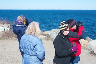 Halibut Point Beginner Bird Walk Apr 2013