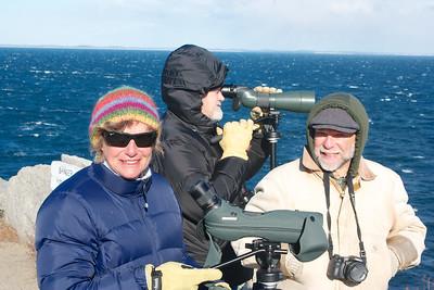 Halibut Point Beginner Bird Walk March 2014