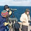 Beginner Bird Walk - Halibut Point SP - March 16, 2014