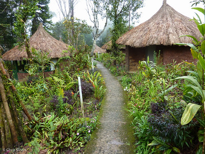 Ambua Lodge, Papua New Guinea (10-03-2013)-2