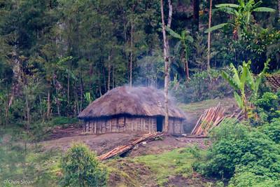 Traditional house at Tonga Trail, Enga Province, Papua New Guinea (10-02-2013) 1449