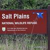 Salt Plains NWR, Cherokee, Oklahoma.