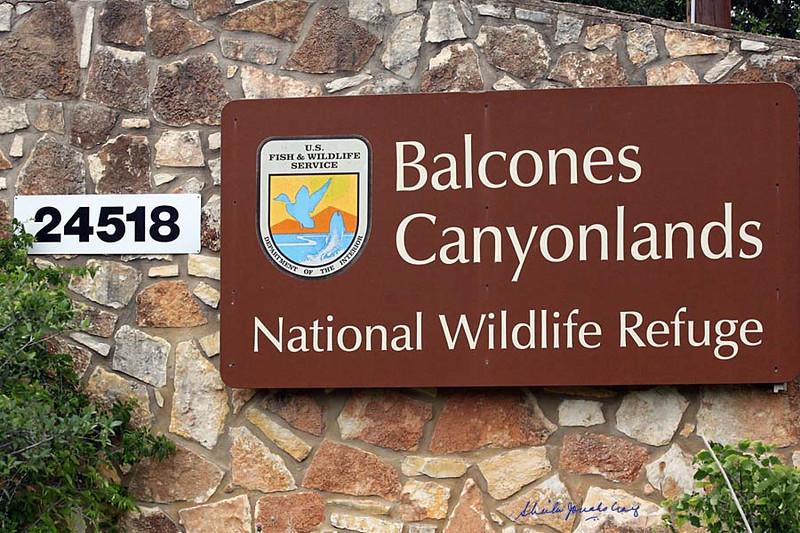 Balcones Canyonlands NWR near Austin, Texas.