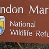 Bandon Marsh NWR, Bandon, Oregon.