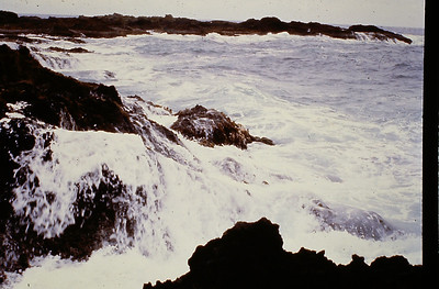 19I Sea Watch