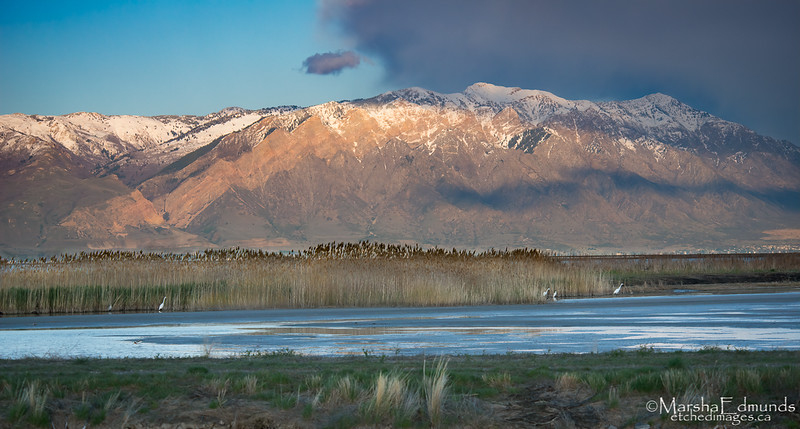 Dusk at the Bear River Migratory Bird Refuge