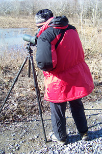 We join the staff at Land Between the Lakes for our annual Eagle Watch, which includes an extra bonus day touring  Cross Creeks National Wildlife Refuge and Fort Donelson National Battlefield as well as LBL.  Patti's setting up the scope for our first sighting.