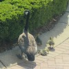 The family is waiting for the final gosling to emerge from the shrubbery.