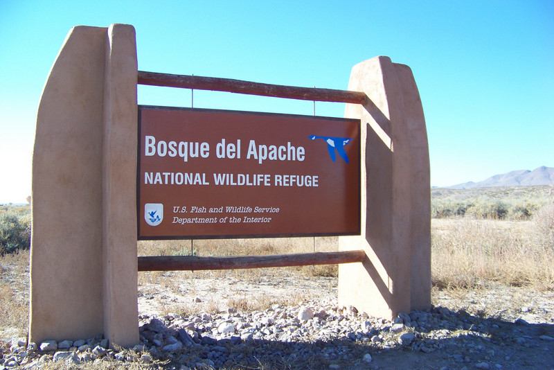 The refuge is set in the Rio Grande Valley, an oasis in the surrounding desert and grassland.