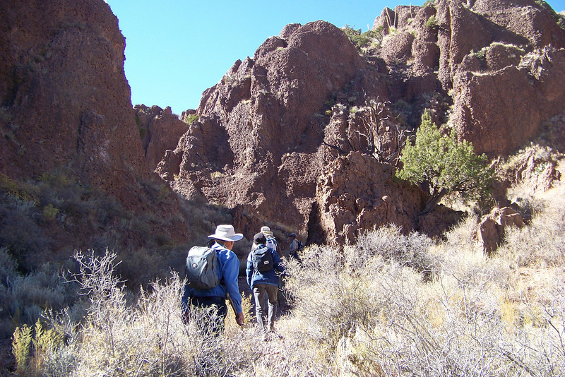 The flora changed dramatically as we began a steep ascent through this canyon which holds moisture.