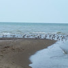 This little spit of land is the southernmost tip of mainland Canada, in Point Pelee National Park.  May 12th, 2011