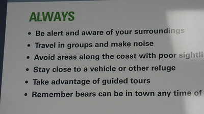 Polar Bear Warning