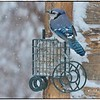 Blue Jay Snow Plowing