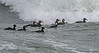Surf Scoters in surf at Point Holmes
