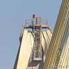 Peregrine Falcon on top of Clark Bridge north tower <br /> Riverlands Migratory Bird Sanctuary