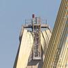 Peregrine Falcon on top of Clark Bridge north tower <br /> Riverlands Migratory Bird Sanctuary
