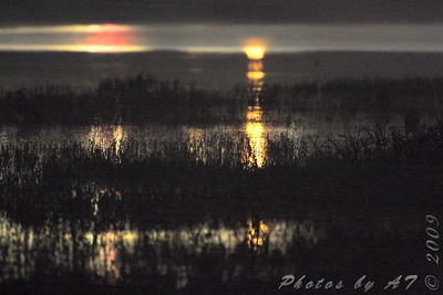 Across Heron Pond from Orton Road  Parking Lot before sunrise  (all lights are from the bridge) Riverlands Migratory Bird Sanctuary