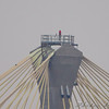 Peregrine Falcon <br /> Guarding top of Clark Bridge tower <br /> Photo from Ellis Bay viewing ramp <br /> Riverlands Migratory Bird Sanctuary