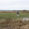SLAS Yellow Rail (less) Walk <br /> Bittern Basin Unit <br /> B.K. Leach Memorial Conservation Area