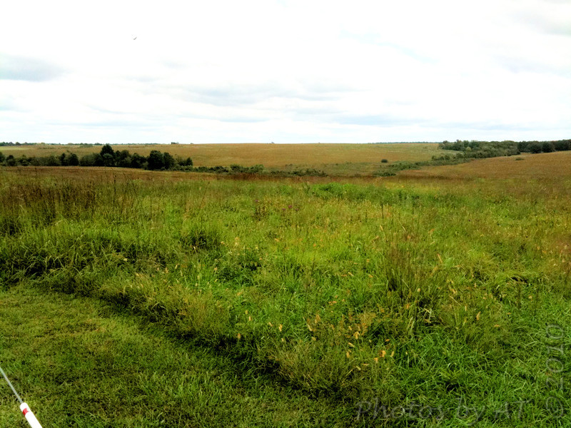 Taberville Prairie Conservation Area<br /> <br /> Taken with SmugShot on my iPhone