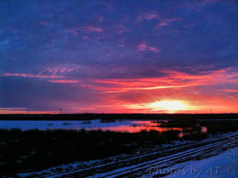 Sunset over Heron Pond <br /> Riverlands Migratory Bird Sanctuary <br /> <br /> Taken with SmugShot on my iPhone
