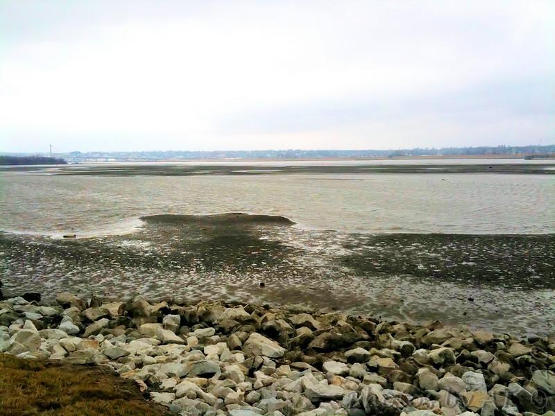 Riverlands Migratory Bird Sanctuary  <br /> 2/21/2011