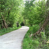 This is where I went off trail to get close to the water.<br /> Bridgeton Riverwoods Park and Trail