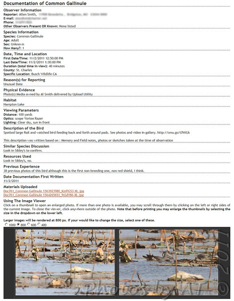 Common Gallinule Documentation <br /> submitted to <br /> Missouri Rare Bird Committee (MRBC)