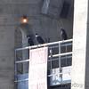Black Vultures <br /> Below Lake of the Ozark dam <br /> ASM Fall Meeting