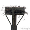 Osprey nest <br /> James Hawn Access <br /> Carlyle Lake