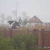 Lois in the fog and rain <br /> Padre Island <br /> Texas