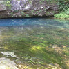 Blue Spring <br /> Shannon County