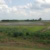 Heron Pond <br /> 7/20/13 <br /> Riverlands Migratory Bird Sanctuary