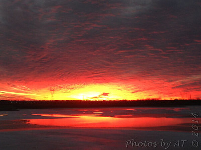 Sunset over Teal Pond  Riverlands Migratory Bird Sanctuary