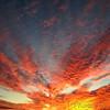 Sunset at <br /> Riverlands Migratory Bird Sanctuary