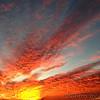 Sunset at Riverlands Migratory Bird Sanctuary