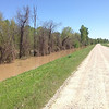North view up levee with flooding on river side <br /> St. Francis River levee just south of HWY 84 west<br /> of Kennett in Dunklin County