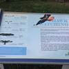 Cape Henlopen State Park <br /> Delaware <br /> 04/20/15