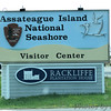 Assateague Island National Seashore <br /> Maryland <br /> 4/21/15