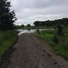 Levee Trail at back of Heron Pond <br /> Riverlands Migratory Bird Sanctuary<br /> Orton Road <br /> 7/07/15