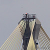 Peregrine Falcon <br /> Top of tower Clark Bridge <br /> Riverlands Migratory Bird Sanctuary