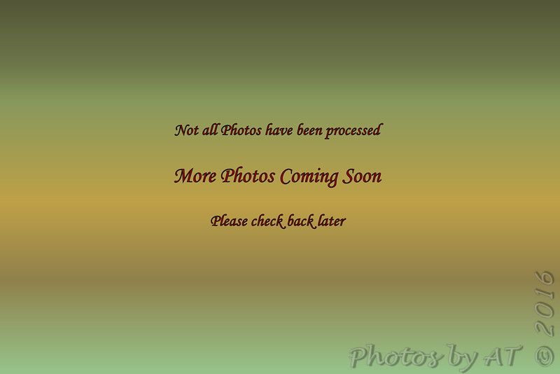 Y:\_Photos\7D2-3\7D2-3  1371_1650  12.03.16_12.12.16 NP