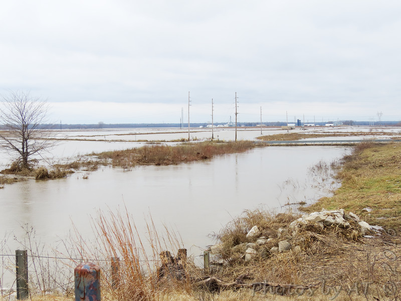 Looking west at Confluence Road bridge <br /> From end of Riverlands Way <br /> ~422 Swans far off in water right of center <br /> Photos farther in gallery <br /> Riverlands Migratory Bird Sanctuary